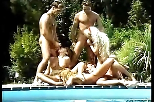 A Sort out Of Horny Ladies Acquire Fucked Beside A Pool